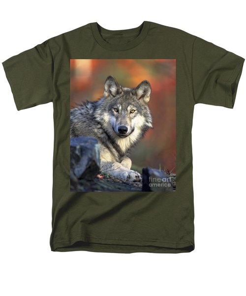 Men's T-Shirt  (Regular Fit) featuring the photograph Wolf Predator Canidae Canis Lupus Hunter by Paul Fearn