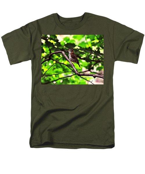 Wood Thrush Singing Men's T-Shirt  (Regular Fit) by Chris Flees