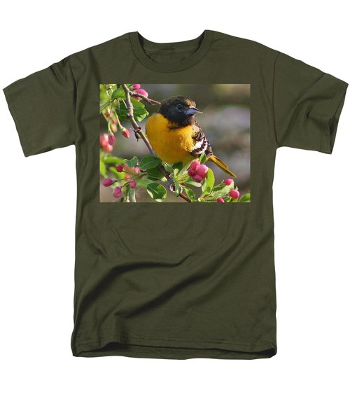 Young Male Oriole Men's T-Shirt  (Regular Fit) by Bruce Bley