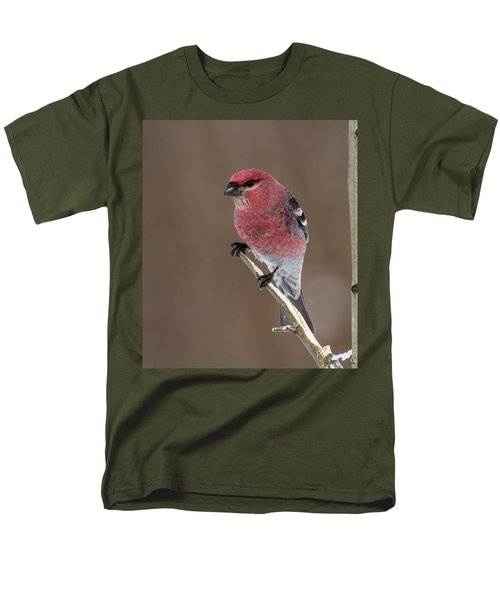 Pine Grosbeak Men's T-Shirt  (Regular Fit) by Doug Lloyd