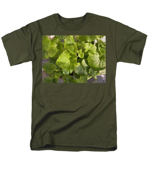 Men's T-Shirt  (Regular Fit) featuring the photograph A Green Leafy Vegetable Plant After Watering In Bright Sunrise by Ashish Agarwal