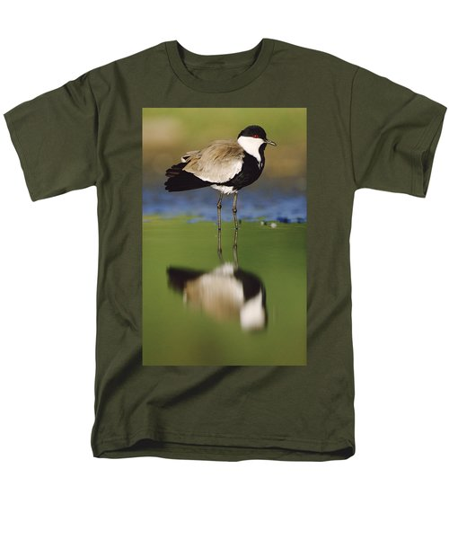 Spur Winged Plover With Its Reflection Men's T-Shirt  (Regular Fit) by Tim Fitzharris