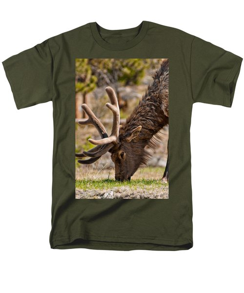 Men's T-Shirt  (Regular Fit) featuring the photograph Young One by Colleen Coccia