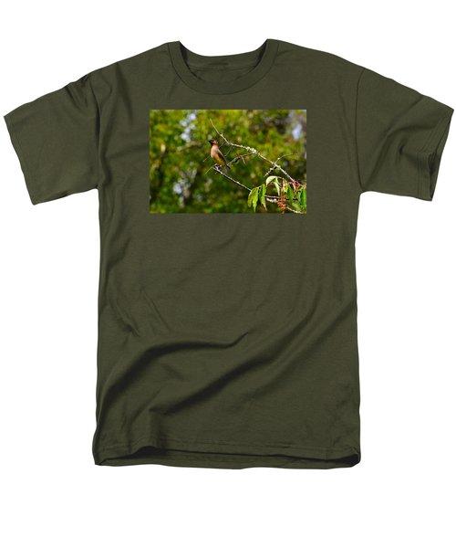 Cedar Waxwing Men's T-Shirt  (Regular Fit) by Dan Hefle