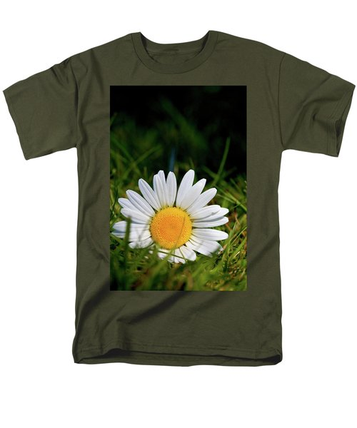 Fallen Daisy Men's T-Shirt  (Regular Fit) by Scott Holmes