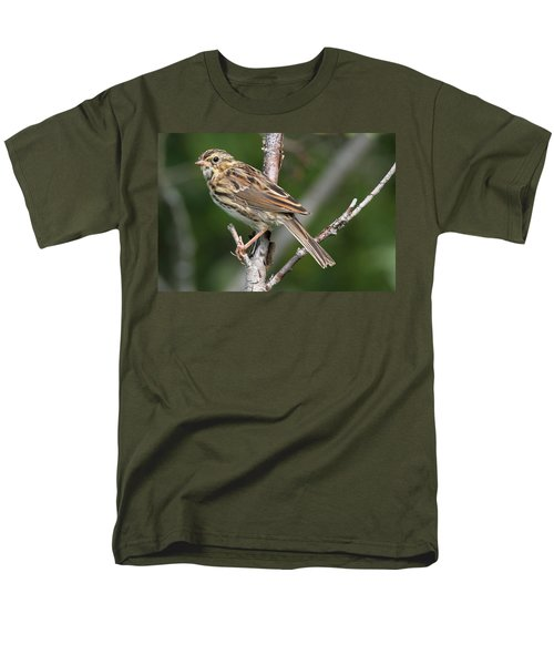 Savannah Sparrow Men's T-Shirt  (Regular Fit) by Doug Lloyd