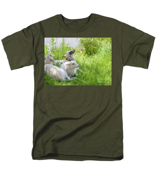 Men's T-Shirt  (Regular Fit) featuring the photograph Three Little Lambs by Patricia Hofmeester