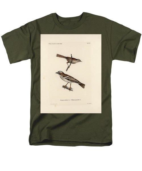 White-browed Sparrow-weaver And Grass Or Bush Warbler Men's T-Shirt  (Regular Fit) by J D L Franz Wagner