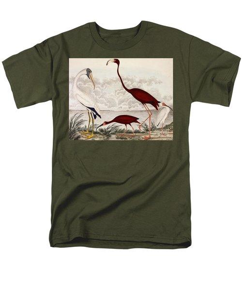 Wood Ibis, Scarlet Flamingo, White Ibis Men's T-Shirt  (Regular Fit) by Alexander Wilson