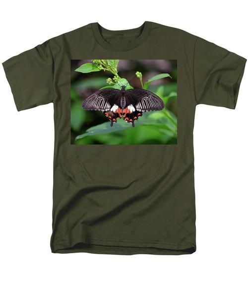 Great Mormon Butterfly Men's T-Shirt  (Regular Fit) by Ronda Ryan