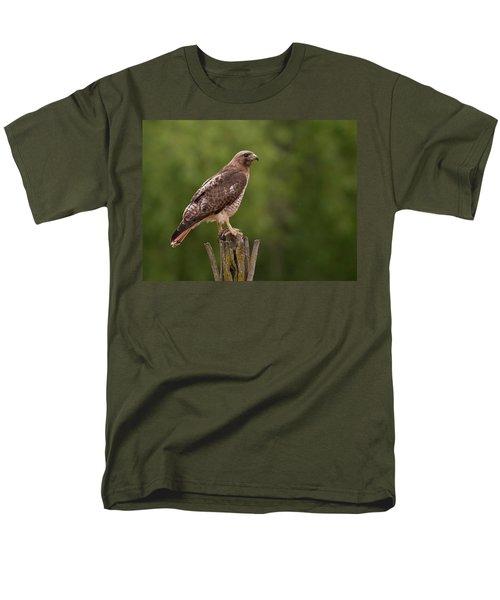 Red-tailed Hawk Men's T-Shirt  (Regular Fit)