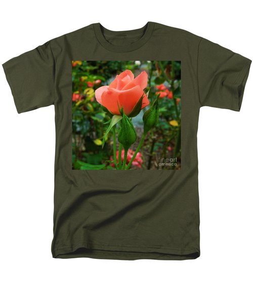 A Delicate Pink Rose Men's T-Shirt  (Regular Fit) by Chad and Stacey Hall