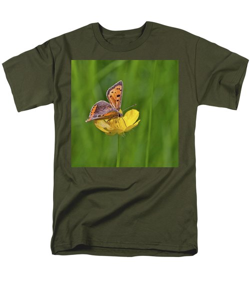 A Small Copper Butterfly (lycaena Men's T-Shirt  (Regular Fit) by John Edwards