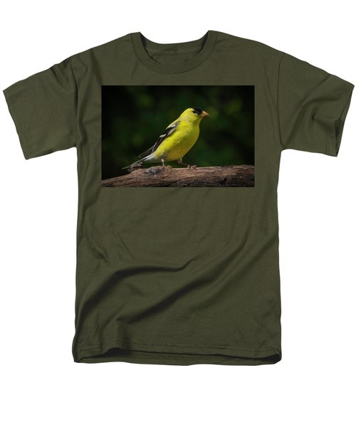 American Goldfinch Male Men's T-Shirt  (Regular Fit) by Kenneth Cole
