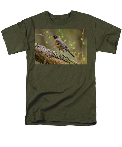 American Robin Men's T-Shirt  (Regular Fit) by Ray Congrove