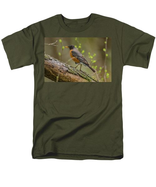 American Robin Men's T-Shirt  (Regular Fit)