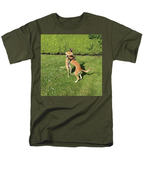 Ava The Saluki And Finly The Lurcher Men's T-Shirt  (Regular Fit) by John Edwards