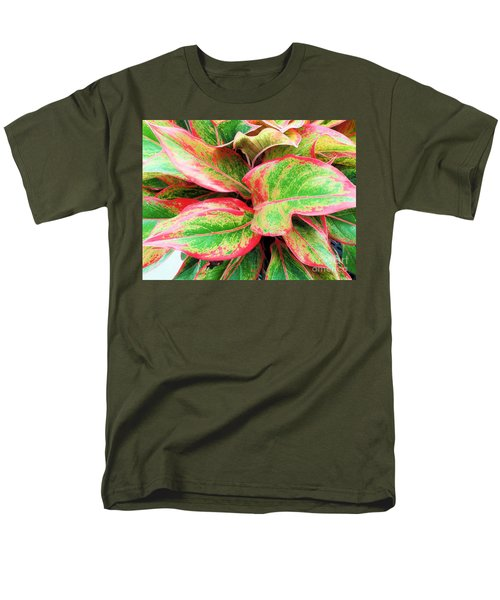 Men's T-Shirt  (Regular Fit) featuring the photograph Beautiful Red Aglaonema by Ray Shrewsberry