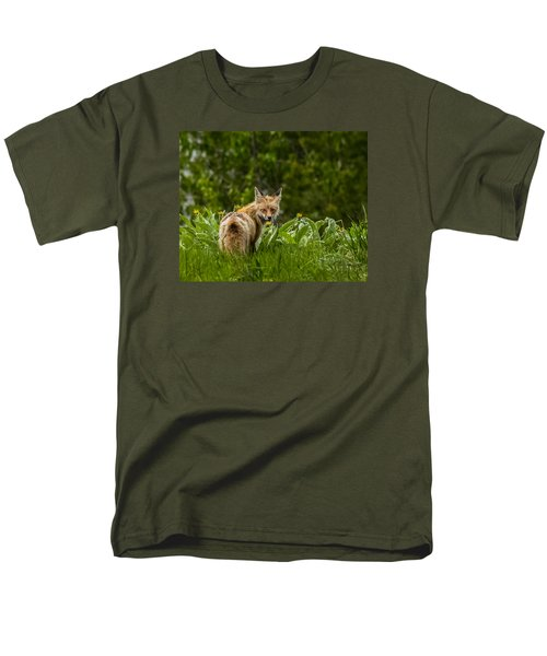 Men's T-Shirt  (Regular Fit) featuring the photograph Beaver Creek Mama Fox In Spring by Yeates Photography