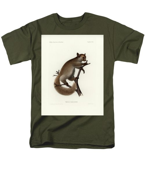 Brown Greater Galago Or Thick-tailed Bushbaby Men's T-Shirt  (Regular Fit) by Hugo Troschel and J D L Franz Wagner