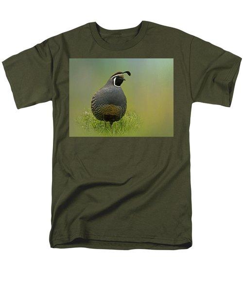 California Quail - 365-42 Men's T-Shirt  (Regular Fit)