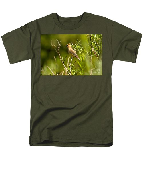 Cedar Waxwing At Glacier Men's T-Shirt  (Regular Fit) by Adam Jewell