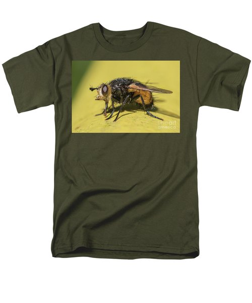 Close Up - Tachinid Fly - Nowickia Ferox Men's T-Shirt  (Regular Fit) by Jivko Nakev