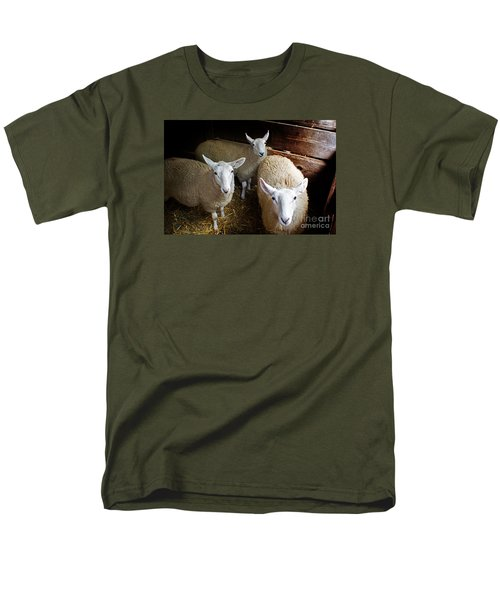 Curious Sheep Men's T-Shirt  (Regular Fit) by Kevin Fortier