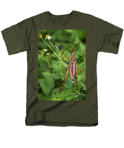 Eastern Lubber Grasshopper  Men's T-Shirt  (Regular Fit) by Saija  Lehtonen