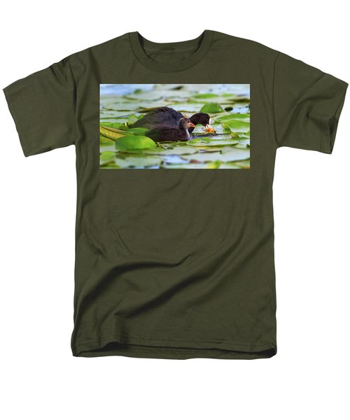Eurasian Or Common Coot, Fulicula Atra, Duck And Duckling Men's T-Shirt  (Regular Fit) by Elenarts - Elena Duvernay photo