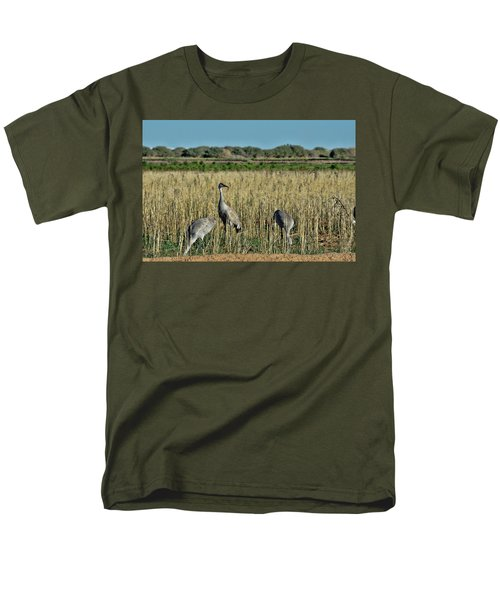 Feeding Greater Sandhill Cranes Men's T-Shirt  (Regular Fit) by Daniel Hebard
