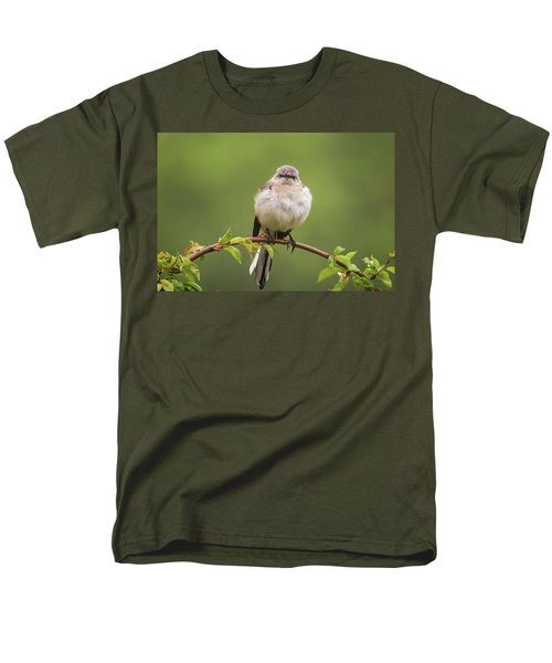 Fluffy Mockingbird Men's T-Shirt  (Regular Fit) by Terry DeLuco