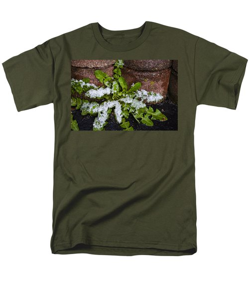 Men's T-Shirt  (Regular Fit) featuring the photograph Frosted Dandelion Leaves by Deborah Smolinske