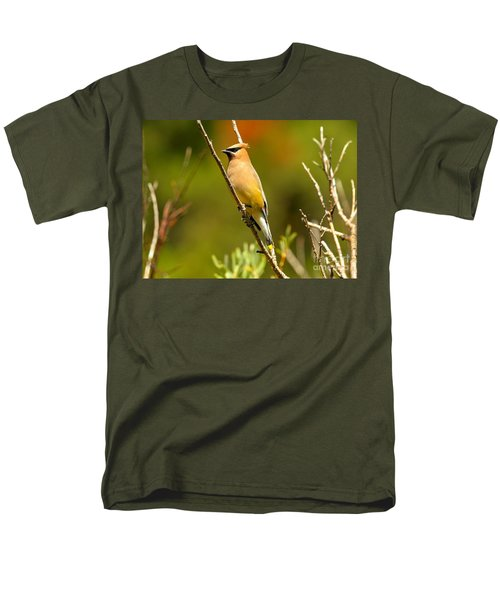 Glacier Cedar Waxwing Men's T-Shirt  (Regular Fit) by Adam Jewell