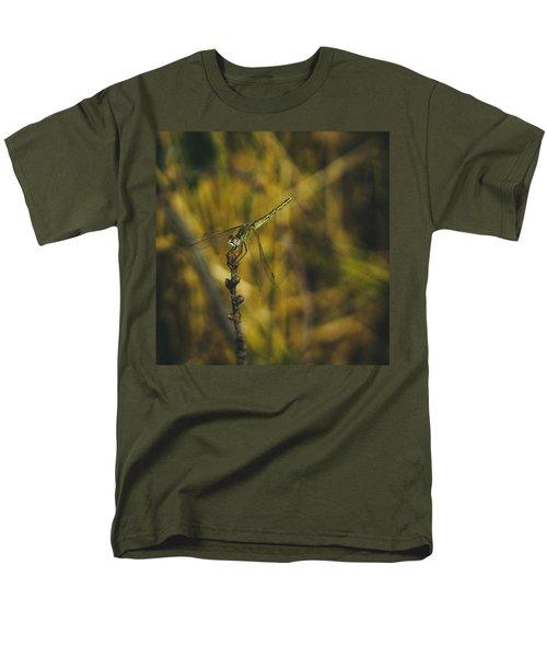 Golden Drangonfly Men's T-Shirt  (Regular Fit) by Cesare Bargiggia