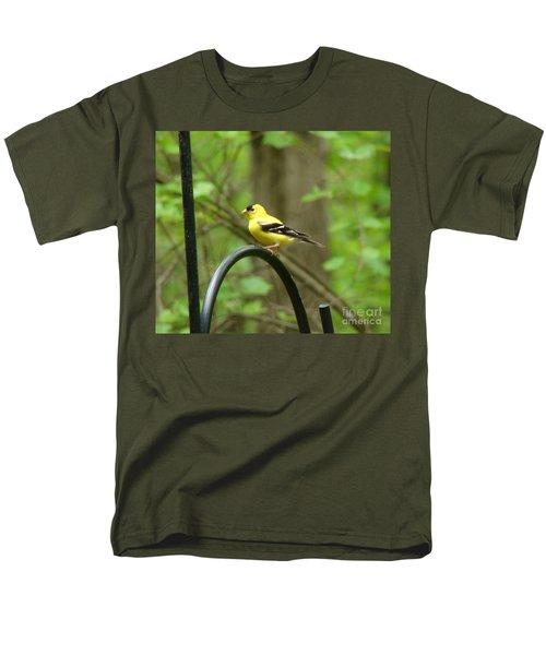 Golden Finch Men's T-Shirt  (Regular Fit) by Rand Herron