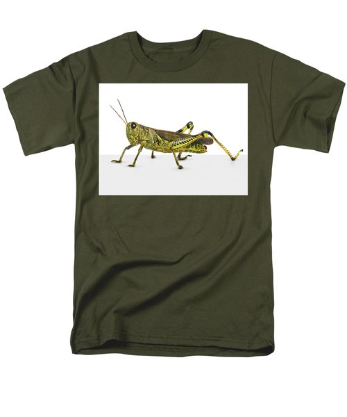 Grasshopper Men's T-Shirt  (Regular Fit)