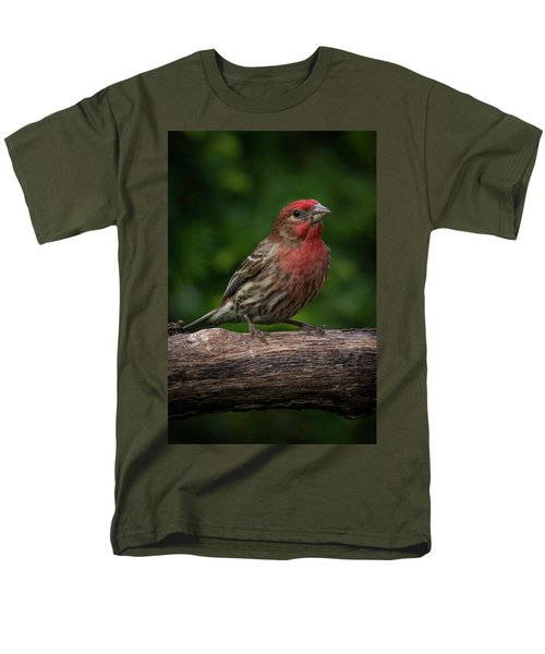 House Finch Men's T-Shirt  (Regular Fit) by Kenneth Cole
