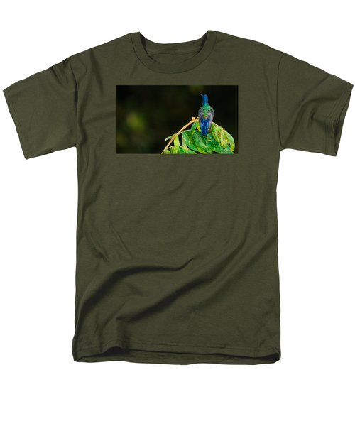 Hummingbird Men's T-Shirt  (Regular Fit) by Daniel Precht
