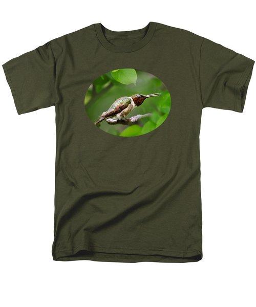 Hummingbird Hiding In Tree Men's T-Shirt  (Regular Fit) by Christina Rollo