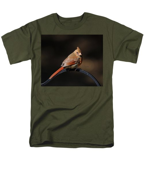 Juvenile Male Cardinal Men's T-Shirt  (Regular Fit) by Diane Giurco