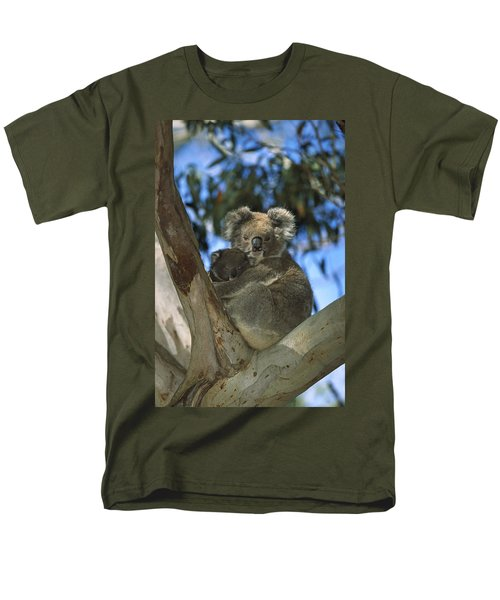 Koala Phascolarctos Cinereus Mother Men's T-Shirt  (Regular Fit) by Konrad Wothe