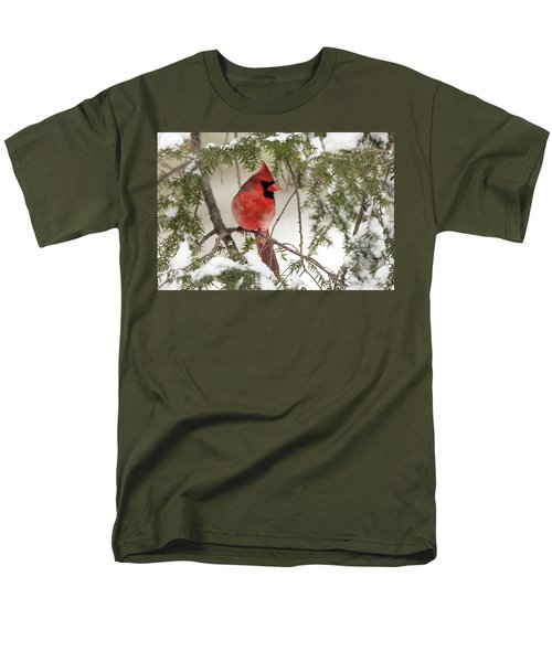 Men's T-Shirt  (Regular Fit) featuring the photograph Leucistic Northern Cardinal by Everet Regal