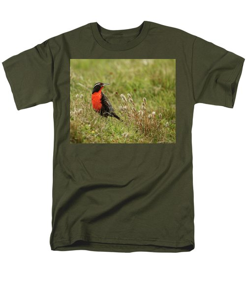 Long-tailed Meadowlark Men's T-Shirt  (Regular Fit) by Bruce J Robinson