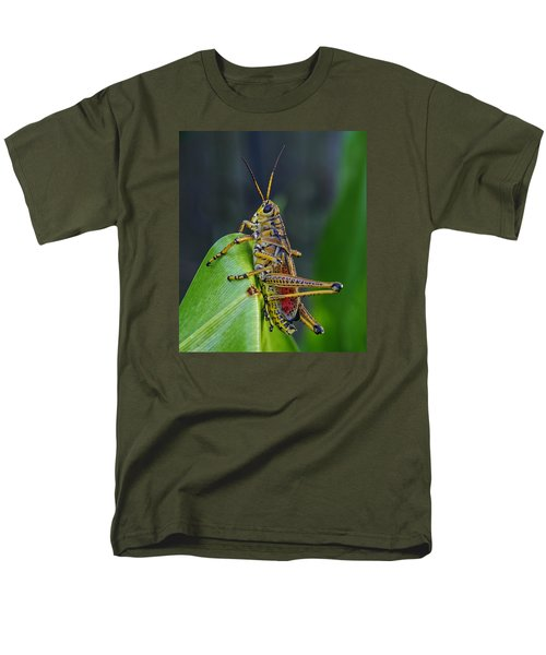 Lubber Grasshopper Men's T-Shirt  (Regular Fit) by Richard Rizzo