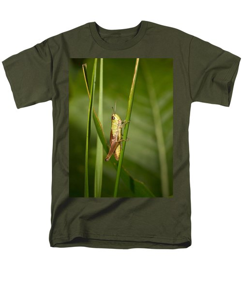 Men's T-Shirt  (Regular Fit) featuring the photograph Meadow Grasshopper by Jouko Lehto