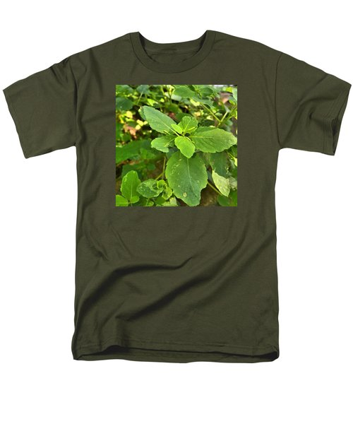 Minnesota Plant Life Men's T-Shirt  (Regular Fit) by Lisa Piper