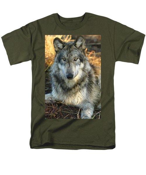 Noble Lupine Men's T-Shirt  (Regular Fit) by Shari Jardina