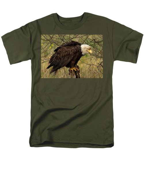 Old Eagle Men's T-Shirt  (Regular Fit) by Sheldon Bilsker