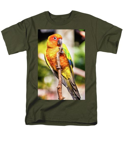 Orange Yellow Parakeet Men's T-Shirt  (Regular Fit) by Stephanie Hayes
